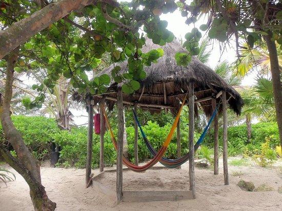 Cabanas La Luna : Sweet Hammocks
