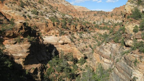 Canyon Overlook Trail : The view...