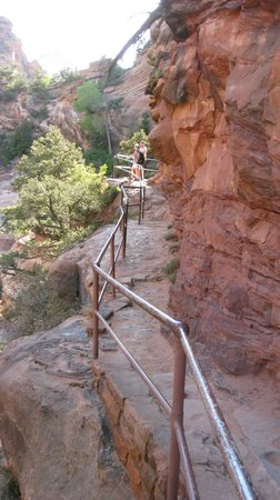 Canyon Overlook Trail : The trail...