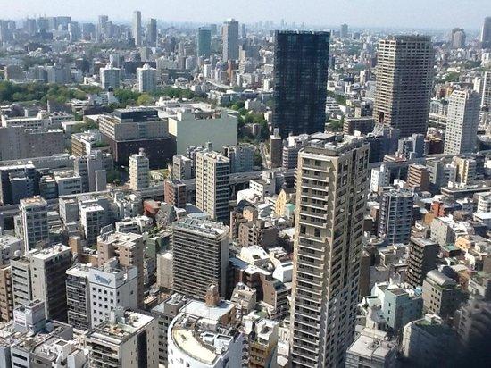 Tokyo Tower : Tokyo do alto