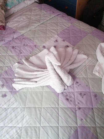 Uncle Brian's Hotel: the beds were made like this with the towels in shapes of a swan and a flower