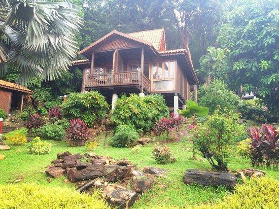 Berjaya Langkawi Resort - Malaysia : Rainforest