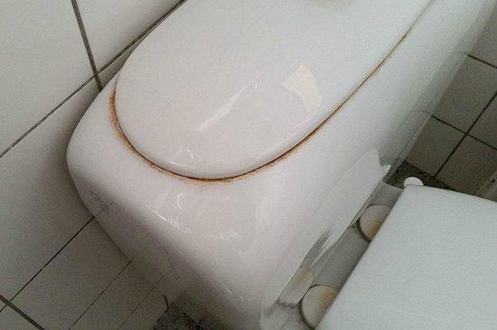 Hotel Svalen : WC