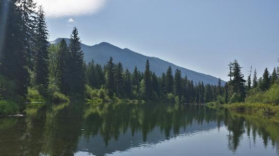 Kootenai River Outfitters: I took this photo off of Cabin 1 ' s dock.