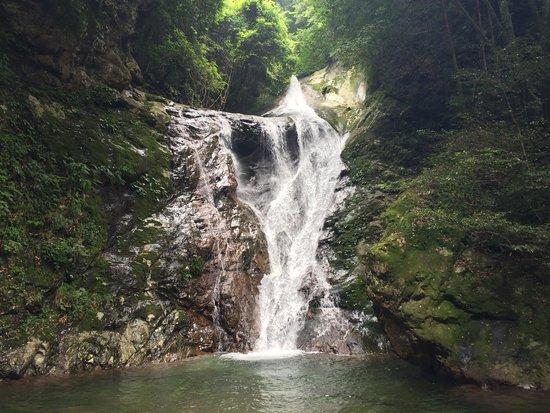 Yakushidani Canyon: 雪輪の滝。 遊歩道をひたすら進むと現れます。