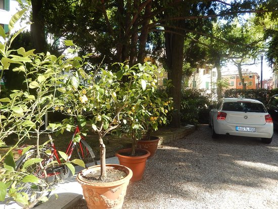 Hotel Terminus: Well shaded parking area.