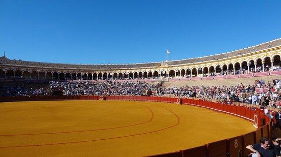 Plaza de Toros de la Maestranza: 外観