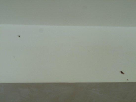 All'Angelo Hotel: Zanzara schiacciata sul soffitto