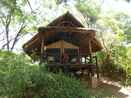 Samburu Intrepids Luxury Tented Camp: Individual tent