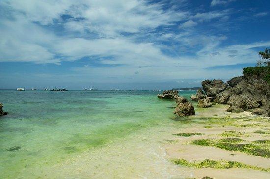 White Beach: Море цветет(