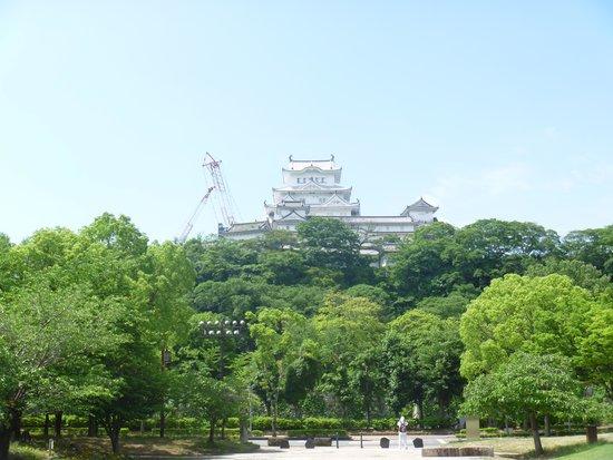 Shirotopia Memorial Park