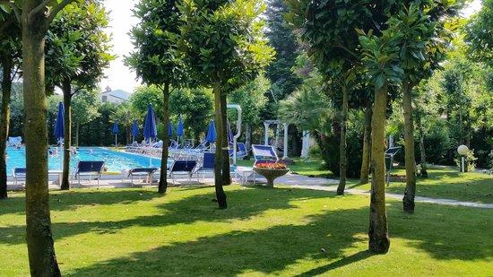 Hotel Terme Metropole: Piscina
