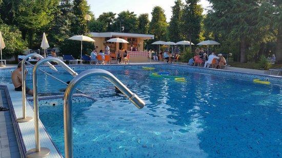 Hotel Terme Metropole : Altra piscina