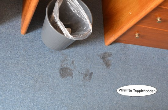 Hotel Santana: Versiffter Teppichboden