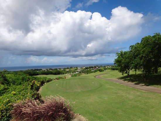 Royal Westmoreland: golf course typical view