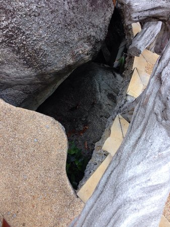 Panviman Resort - Koh Pha Ngan: And this is also not safe in front of our door...
