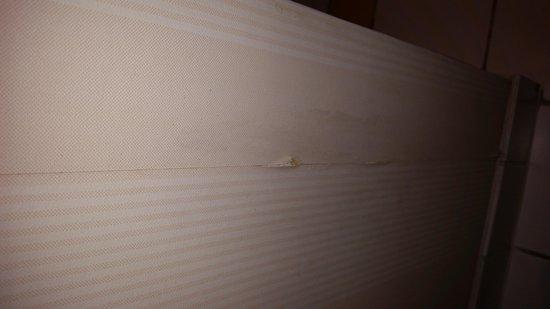 Disneyland Hotel : papier peint toilette de la chambre bravo urine contre le mur