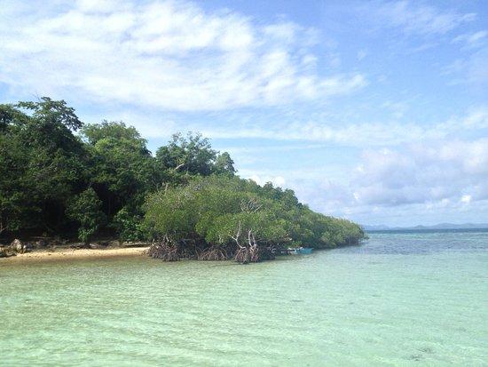 Majika's Island Resort : white sand beach