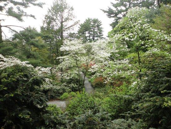 Longwood Gardens: Тропа для гуляния.