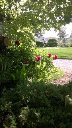 Les Alisiers : Côté jardin