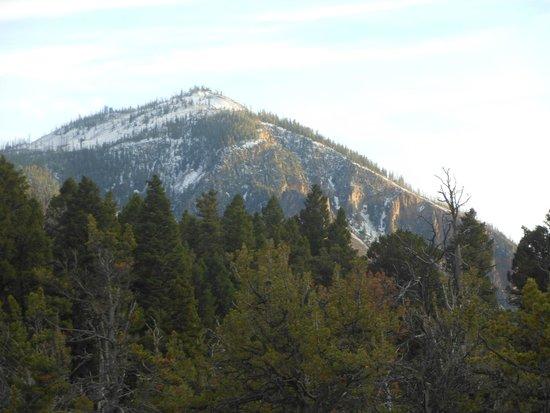 Yellowstone Basin Inn : cet année,là l-hiver était précoce.