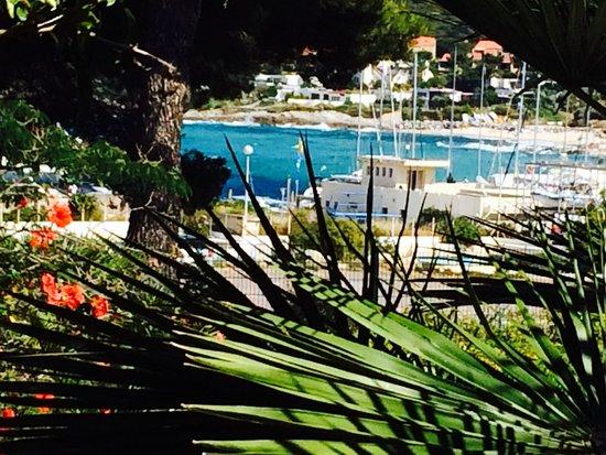 Club Med Sant'Ambroggio : Vue de la terrasse du club med ! 12-06-14