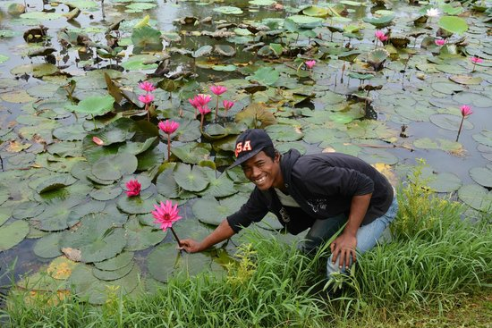 Angkor Palace Resort & Spa: the gardener with a lotus flower