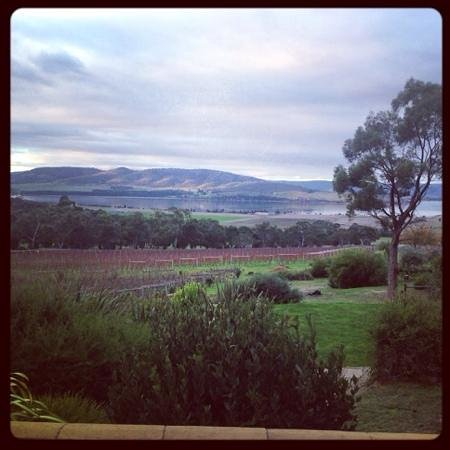 Boutique Wine Tours In Hobart