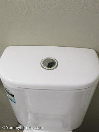 Rydges Camperdown: Broken toilet flush button