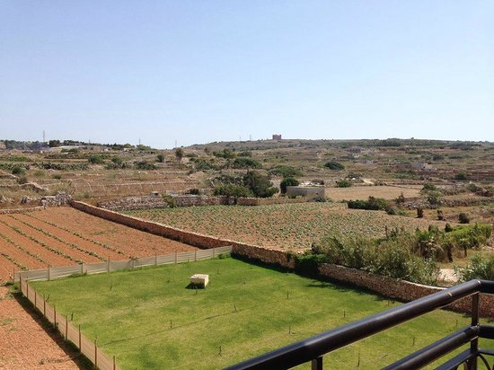 Ramla Bay Resort: Countryside view from the balcony