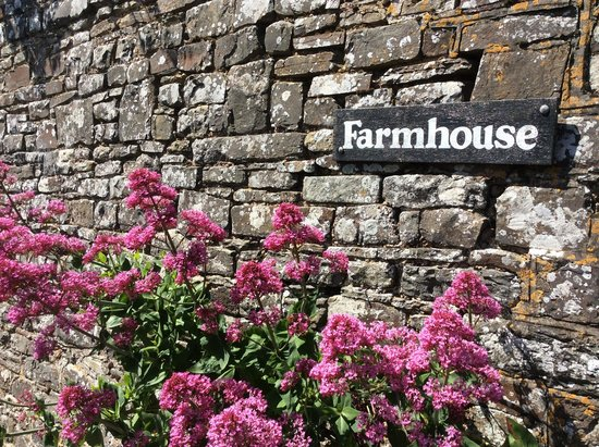 West Titchberry Farm Guest House: Wall