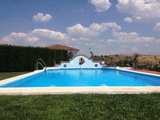 Hotel Vega de Cazalla : Piscina en junio