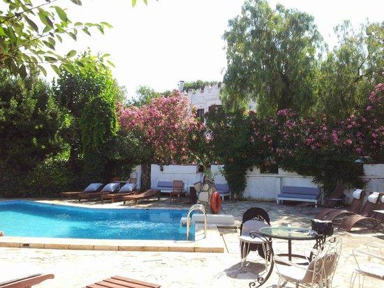 Hotel Kalehan: La piscine