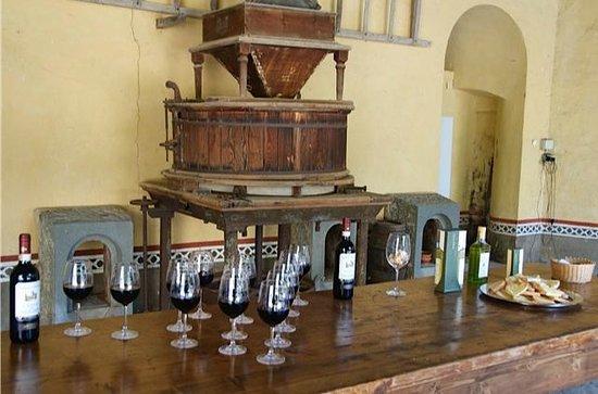 Tuscany Vespa Tours: Wine Tasting