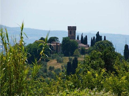 Tuscany Vespa Tours: Views