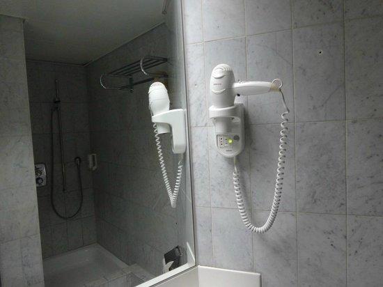 Mercure Plaza Biel: Скромная ванная комната с феном