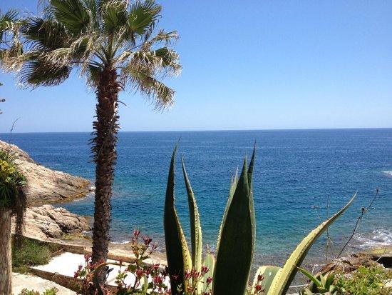 Hotel Eden Roc: Vue sur mer du jardin de l'hôtel