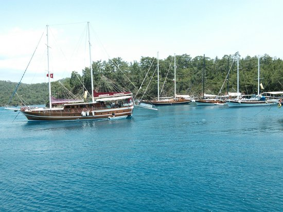 Bodrum Gulet Hotel : Boats at anchor