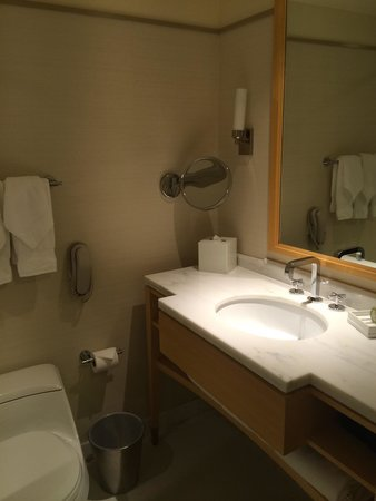 Colonnade Hotel: Badezimmer