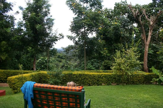 Songota Falls Lodge: Reading a book