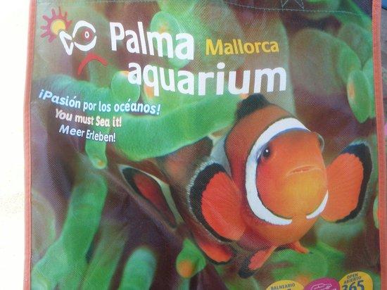 Palma Aquarium : Regalo all'uscita