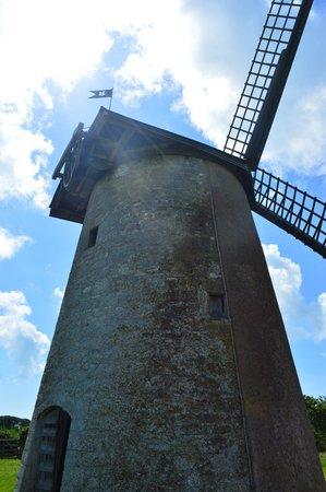 Bembridge Windmill: A sunny mill