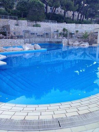 Hotel Dubrovnik Palace: piscine