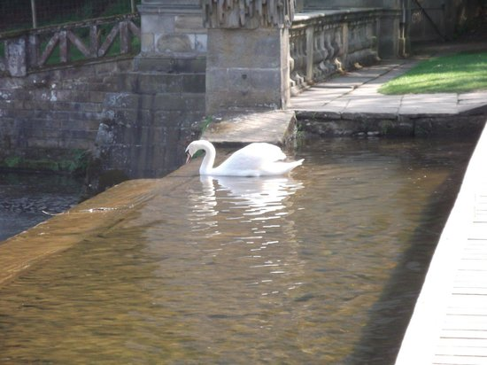 Fountains Abbey and Studley Royal Water Garden: A nervous visitor