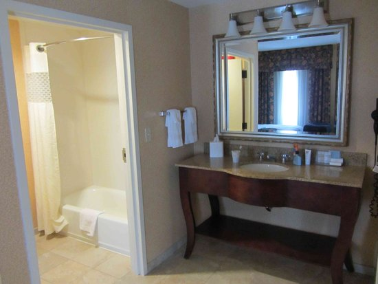 Hampton Inn & Suites Mobile/Downtown: Bathroom