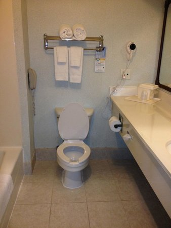 Clarion Inn & Suites West Chase : Bagno