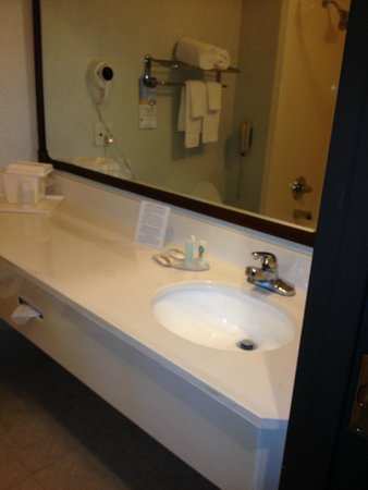Clarion Inn & Suites West Chase: Bagno