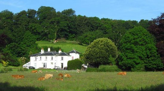 Cofton Holidays: Eastdon House and the stable cottages are in a very rural location