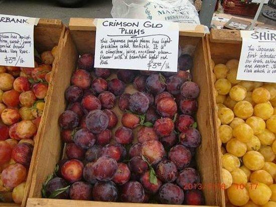 Farmer's Markets in Napa: プラム