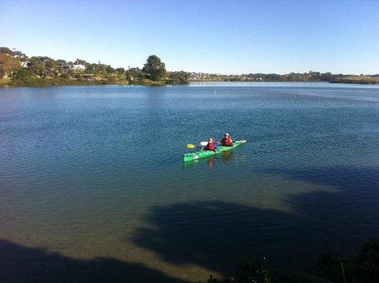 Orewa – Te Ara Tahuna Estuary Cycleway: Kayaking